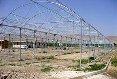 تفاهم نامه توسعه شهرک های گلخانه ای استان اردبیل امضا شد