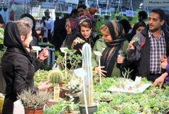 برگزاری نمایشگاه گل و گیاه و لوازم آرایشی در شیراز