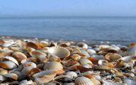 پنج ساحل زیبای شمالی از بندر انزلی تا کلارآباد