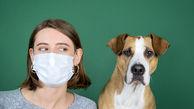 آیا از حیوانات خانگی هم باید تست کرونا گرفته شود؟