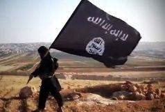 دستگیری تروریست داعشی معروف به