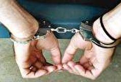 دستگیری سارقان طلا ، جواهر و پول شهروندان سمنانی