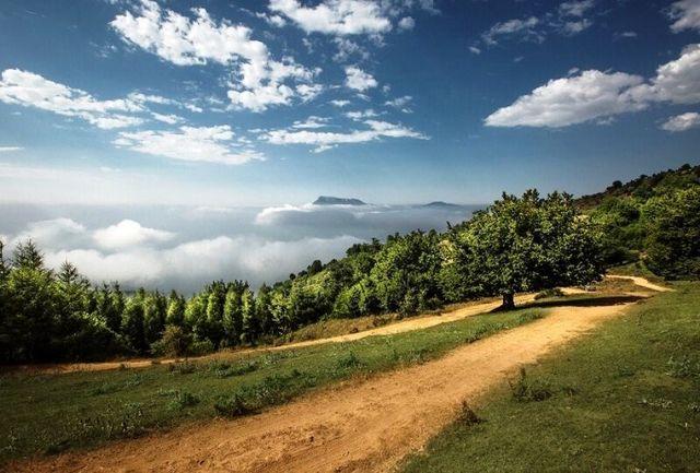 آسفالت مسیر جنگل ابر با تلاشها برای ثبت جهانی آن همخوانی ندارد