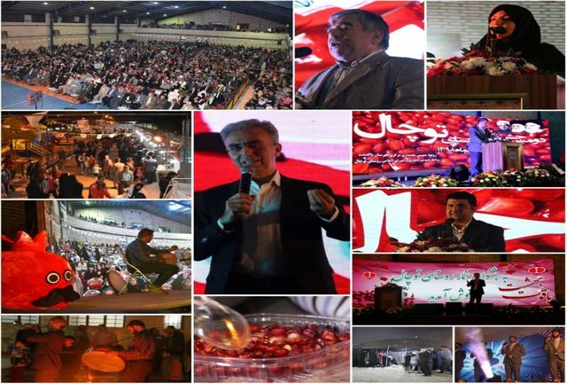 برگزاری دومین جشنواره انار روستایی در پاکدشت