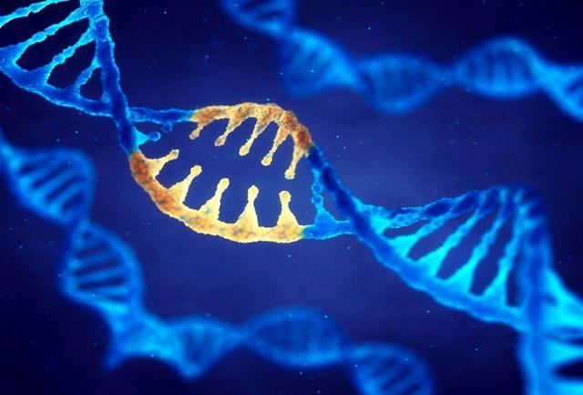حفظ اطلاعات ذخایر ژنتیکی کشور از اولویتها است