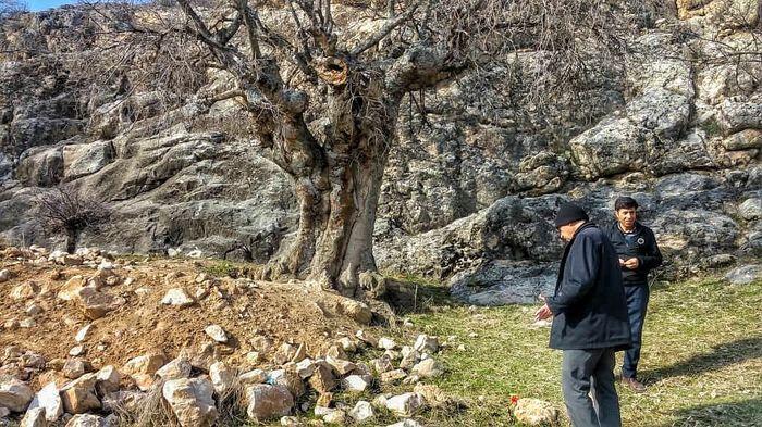 انجام 12700 گشت نظارت و کنترل از سوی یگان حفاظت میراث فرهنگی خراسان شمالی