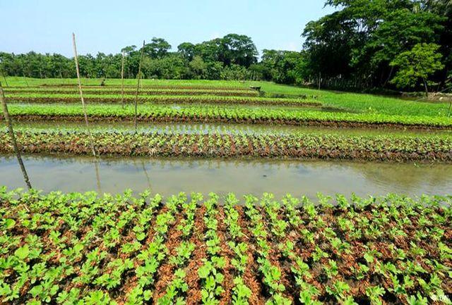 92 درصد آب نهاوند در بخش کشاورزی صرف می شود