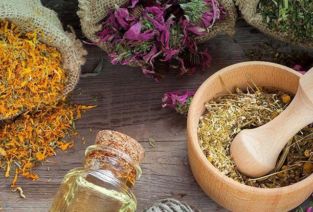 طب سنتی و اهمیت استفاده از گیاهان دارویی