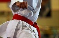 """پویش """"در خانه مى مانیم و تمرین کاراته مىکنیم"""" آغاز شد"""