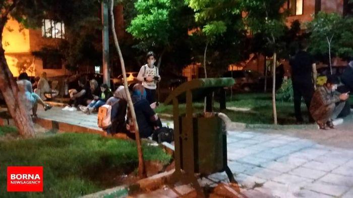 فعال شدن گسل مشا، سابقه ایجاد سه زلزله ٥ تا ٧ ریشتری در تهران را دارد