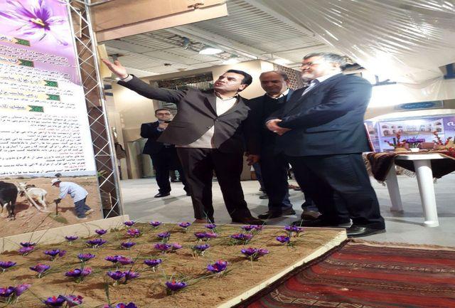 حضور استاندار خراسان جنوبی در نمایشگاه بین المللی گردشگری