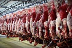 قم 4.2 درصد گوشت مصرفی کشور را تامین میکند