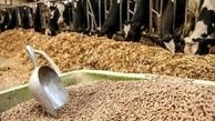 خروج نهادههای دامی از بنادر با مجوز وزارت جهاد کشاورزی است/ تحویل نهادههای دامی منوط به عرضه کالا در شبکه توزیع