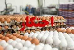 پلمب انبار احتکار تخم مرغ در گالیکش/ توزیع تخم مرغ های احتکار شده با نرخ دولتی