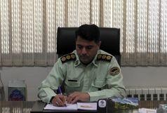 دستگیری اراذل و اوباش در شهرستان