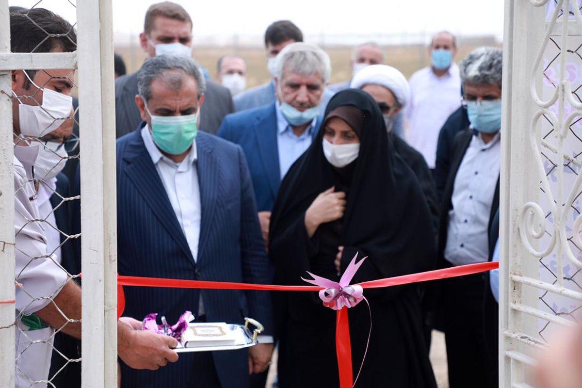 طرح پرورش پولت تخم گذار در روستای نودهک تاکستان افتتاح شد