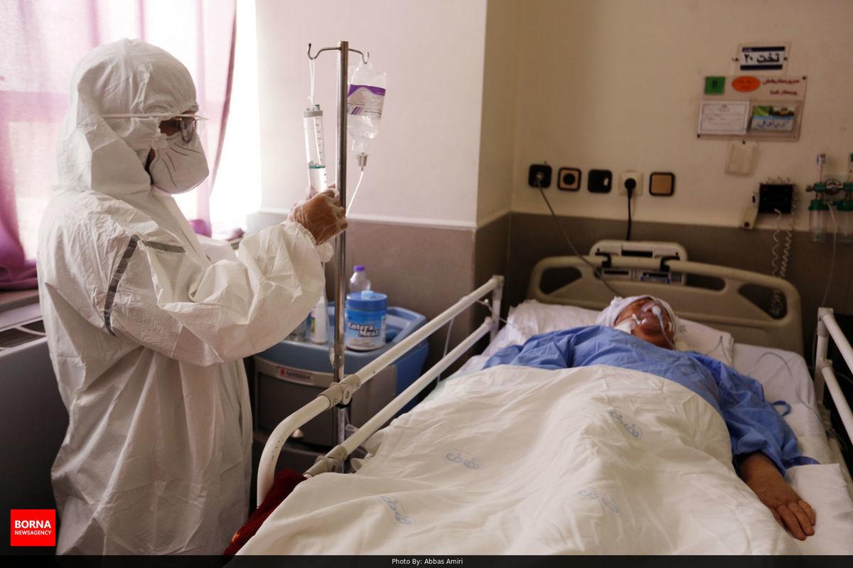 طی شبانه روز گذشته 233 بیمار دیگر قربانی کرونا شدند