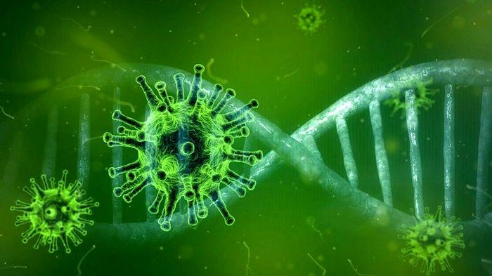 کشف دارویی که میتواند کرونا را در ساعات اولیه درمان کند