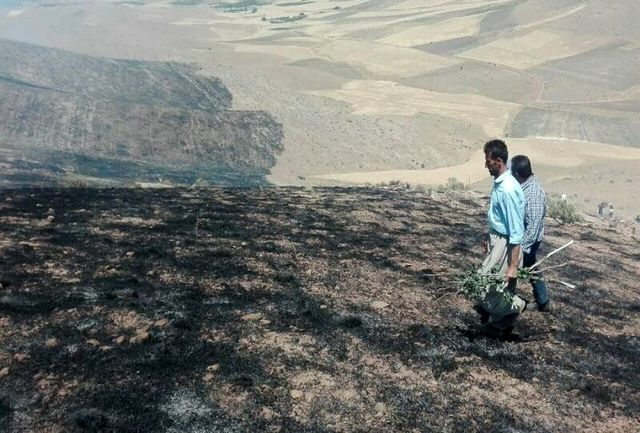 بیش از ۱۰۰ هکتار از مراتع بوکان در آتش سوخت