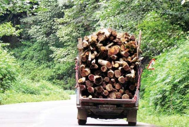 کشف 4 تن چوب قاچاق