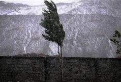بارش برف آذربایجان شرقی را سفید پوش کرد