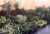 افتتاح هفتمین نمایشگاه گل و گیاه و گیاهان دارویی در قزوین