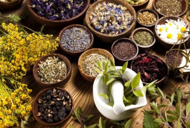 اختصاص ۲۳۳هکتار سطح زیر کشت گیاهان داروئی در شهرستان رابر