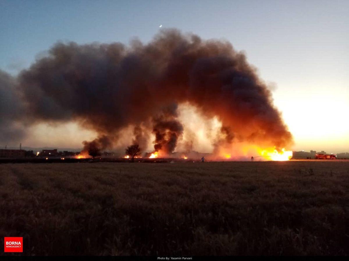 مهار آتش سوزی در لحظات اولیه/ اقدامات کشاورزان دلیل بروز حریق