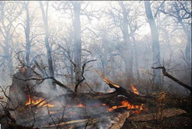 آتش سوزی جنگلهای مریوان ده روزه شد