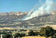 آتش سوزی جنگلها در ایلام جان سرباز نیروی انتظامی را گرفت