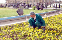 خدمات شهری تبریز به استقبال بهار ۱۴۰۰ می رود