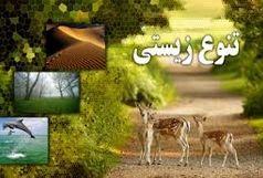 ستاد برگزاری روز جهانی تنوع زیستی در خراسان جنوبی تشکیل شد