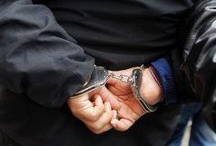 دستگیری سارق حرفه ای محموله های باری کامیون در مهران