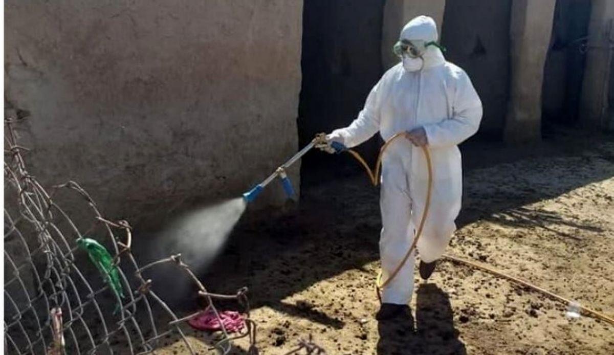 بیماری کشنده جدید در عراق