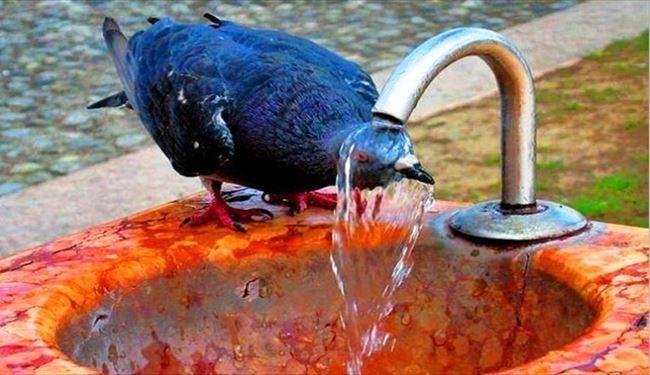 دمای خوزستان پنج درجه کاهش می یابد