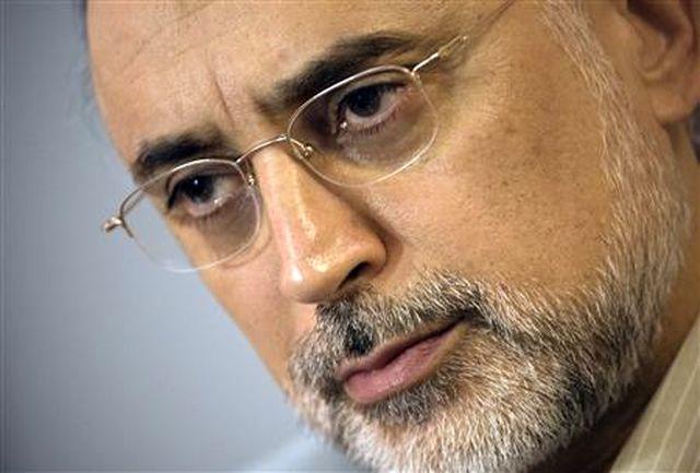 واکنش رئیس سازمان انرژی اتمی به خبر دو تابعیتی بودن خود
