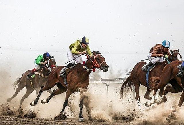 هفته هشتم مسابقات اسبدوانی تابستانه در بندرترکمن برگزار شد