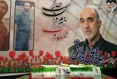 مستند «پردهنشین» از زندگی سردار شهید ییلاقی اشرفی