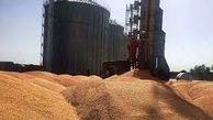 تشکیل پرونده برای یک مرکز خرید گندم غیر مجاز در لرستان