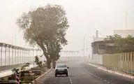 وزش وحشتناک باد شدید در جنوب شرقی کشور+فیلم