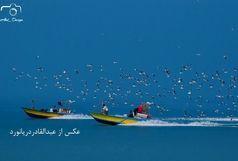 پذیرش 3 عکس از هنرمند قشمی در جشنواره عکس تاجیکستان