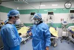 افزایش بیماران کرونای انگلیسی در هرمزگان به ۱۸ نفر