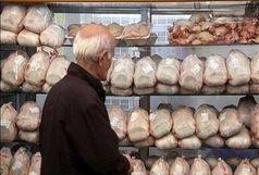 رشد ۱۰.۵ درصدی عرضه گوشت طیور