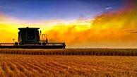 تاکید بر رفع موانع همکاری در ۲۸ پروژه مشترک کشاورزی میان ایران و چین