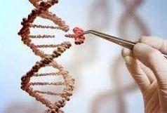 دستگاه تکثیر ژن، در دانشگاه صنعتی شریف ، طراحی وساخته شد