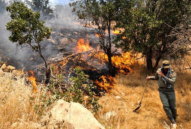 آمادگی یگان حفاظت برای مهار آتش سوزی احتمالی در جنگلها