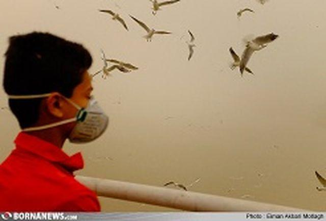 آمادگی شرکت های پخش دارویی خوزستان برای تامین داروهای تنفسی