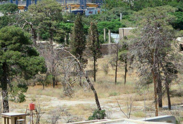 دانشگاه امام صادق(ع) قصد ساخت و ساز در باغ سالاریه قم را دارد/دو پیشنهاد به مسئولان دانشگاه