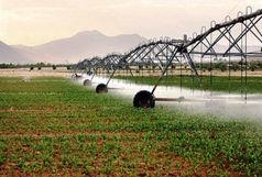 زارع :  302 هزار هکتار از اراضی کشاورزی کشور به سامانه نوین آبیاری مجهز شدند
