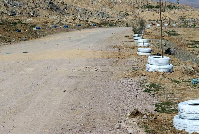 کاشت یک هزار اصله نهال جدید در محل دفن زباله ارومیه